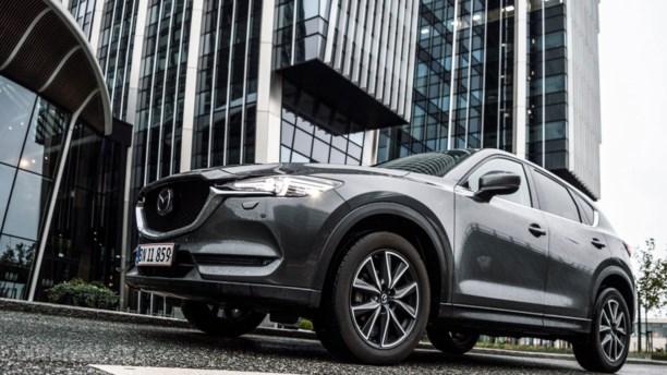 Mazdas logrende labrador