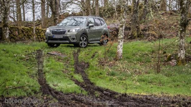 Helt i skoven – Subaru Forester e-Boxer