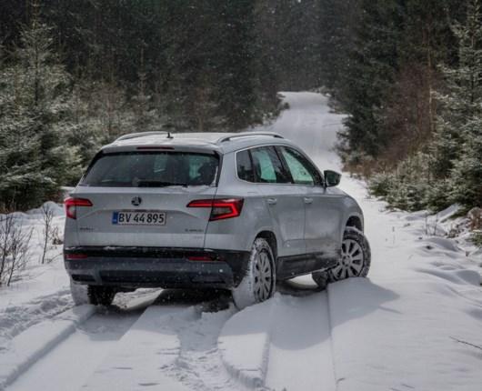 Skoda Karoq – den nye snemand